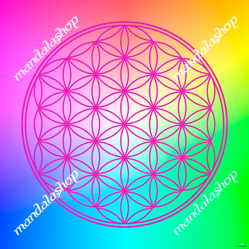 Multicolour Flower of Life canvas